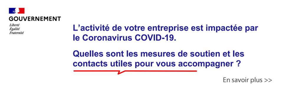 gouvernement covid 19 coronavirus